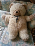 teddy7