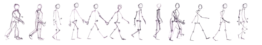 walk cycle sketches