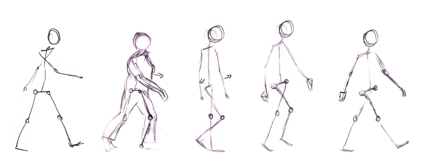 walk cycle basics 2