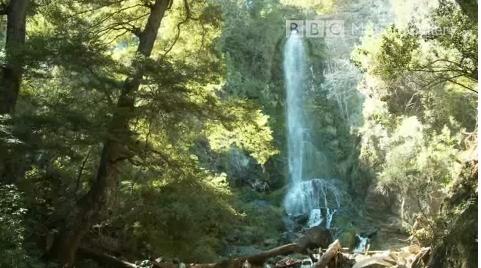 waterfallx